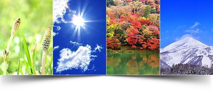 夏と冬の気象情報