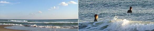 遠州灘(表浜)の写真